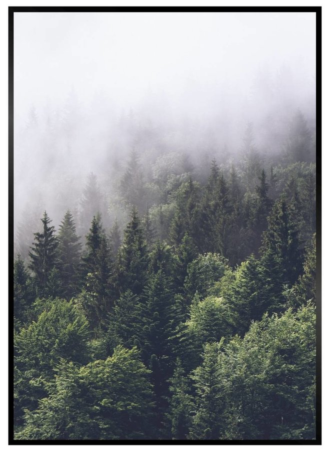 Wildernis Forest Nordic Poster