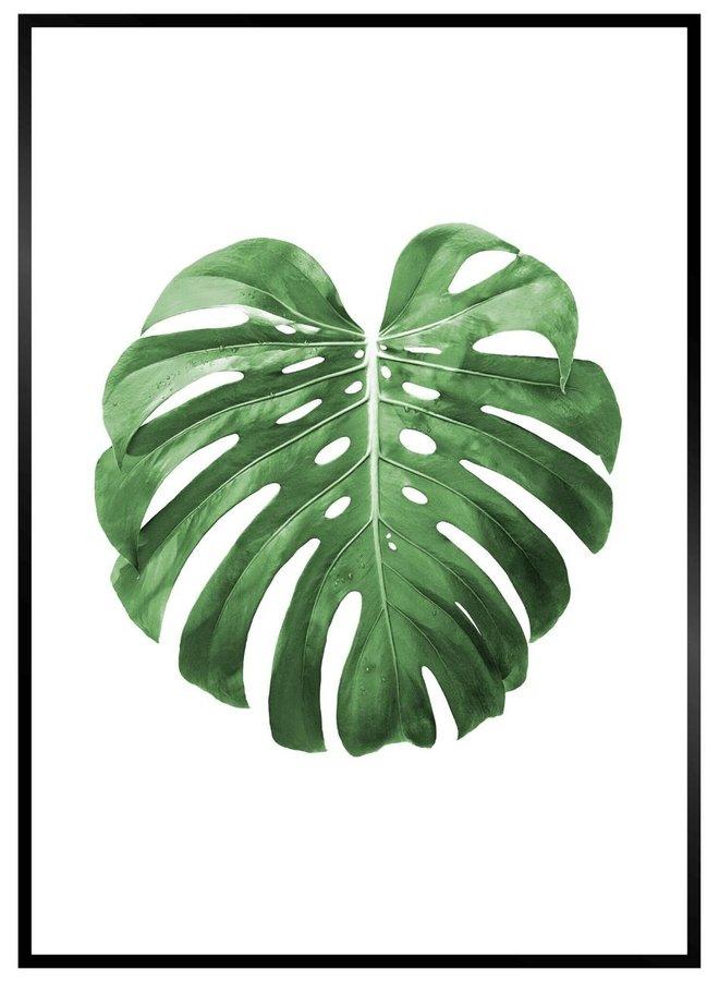 Poster Blad Groen