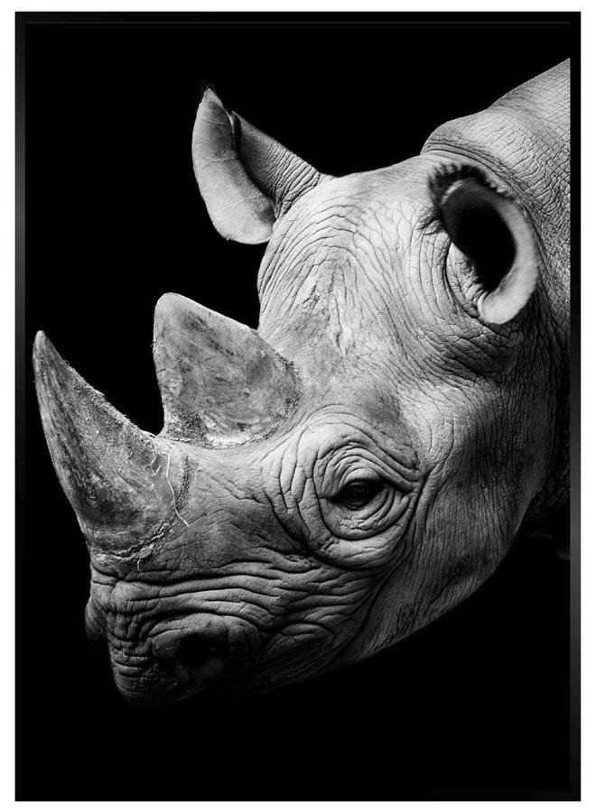 Neushoorn Zwart Poster