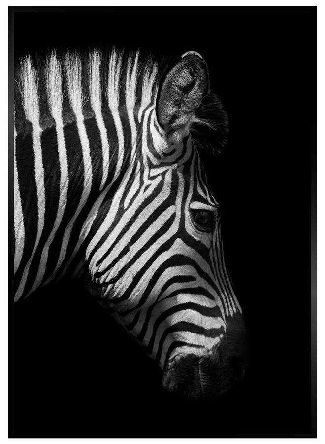 Zebra Zwart Poster