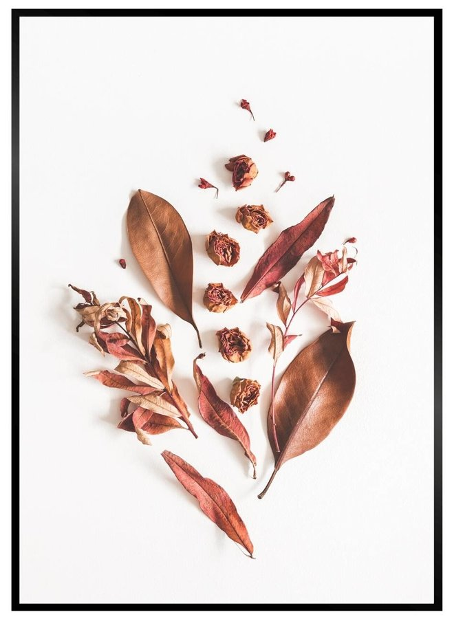 Coral Leafs Poster