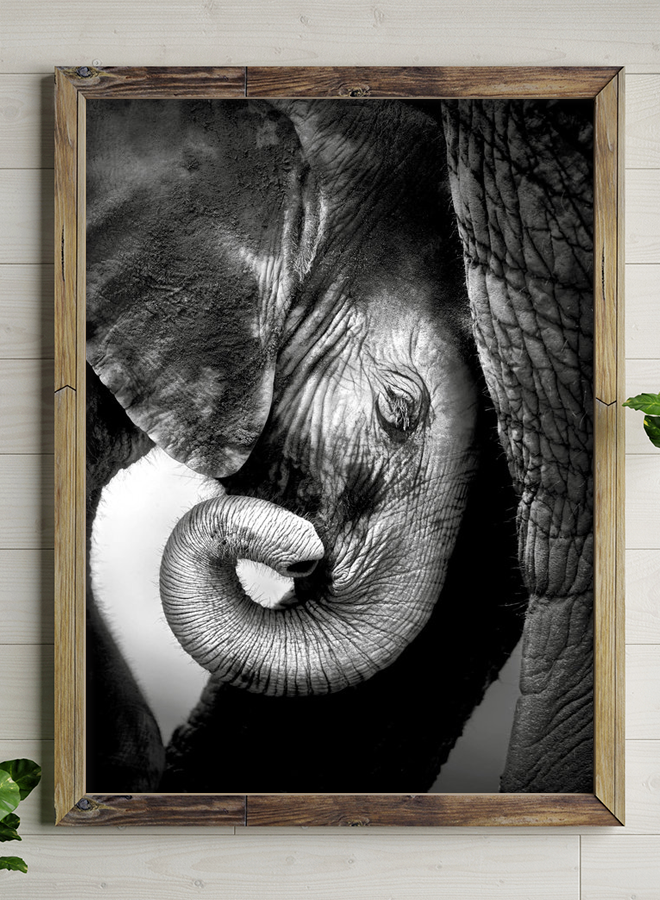 Black Baby Elephant Close Up Poster