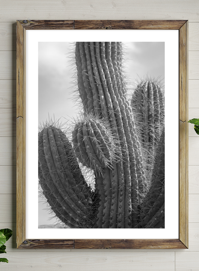 Cactus Close Up Poster lll