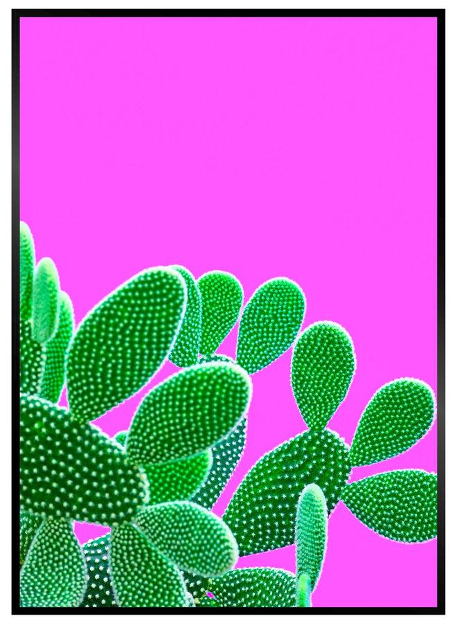 Pink Cactus I Poster