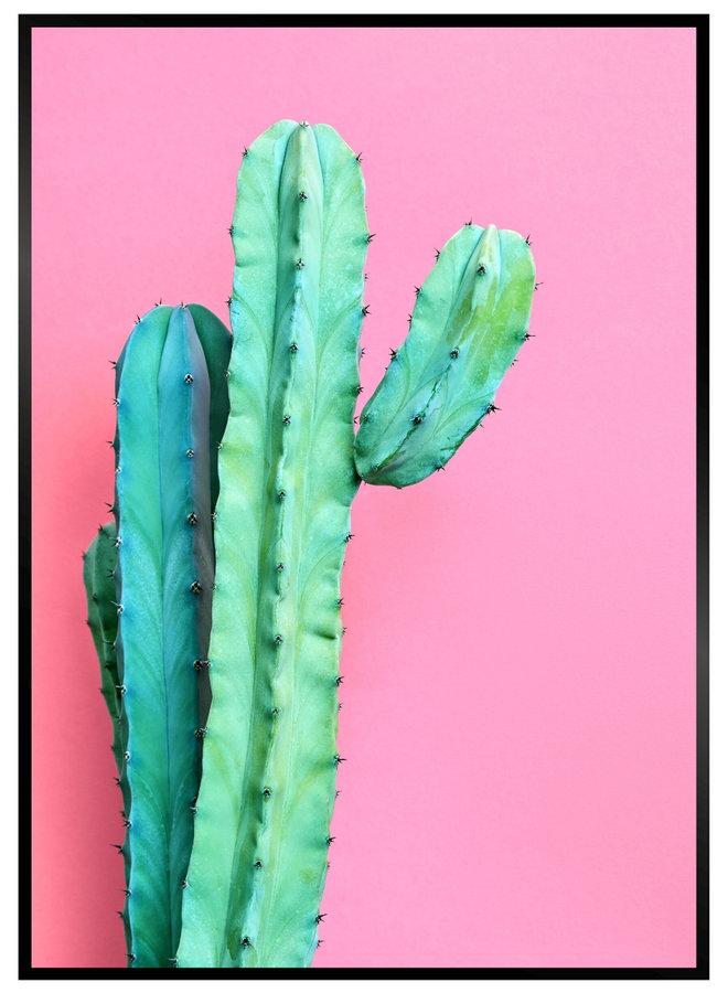 Pink Cactus III Poster