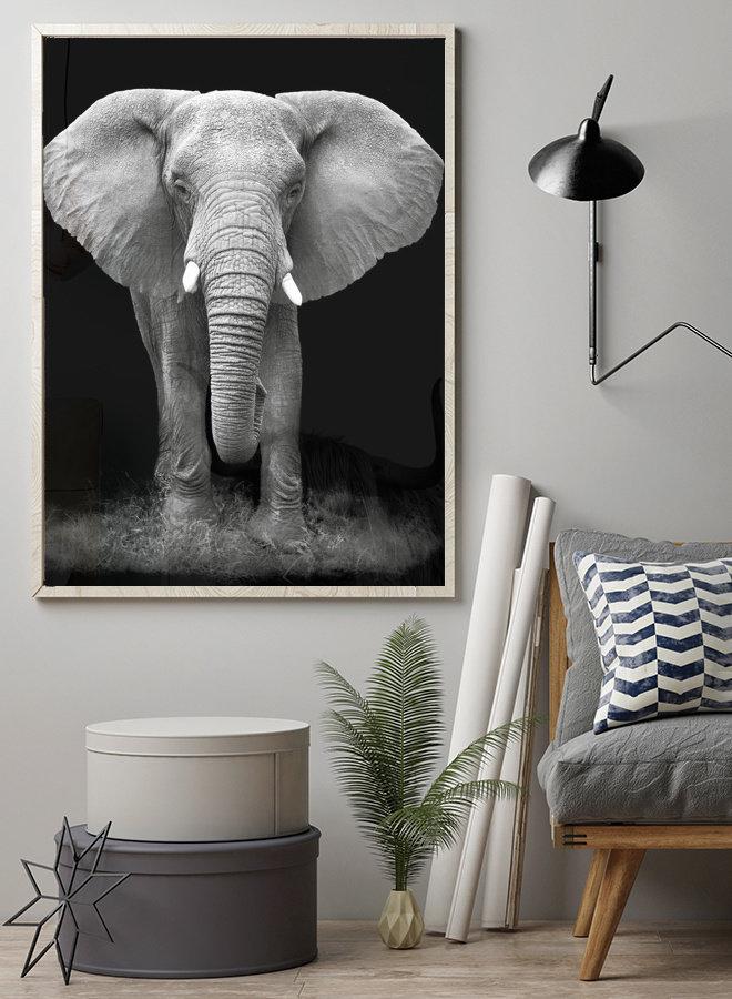 Black Elephant Poster