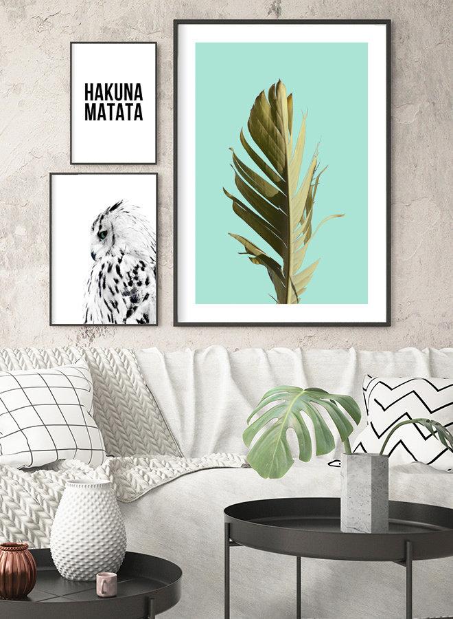 Palm Blad Poster