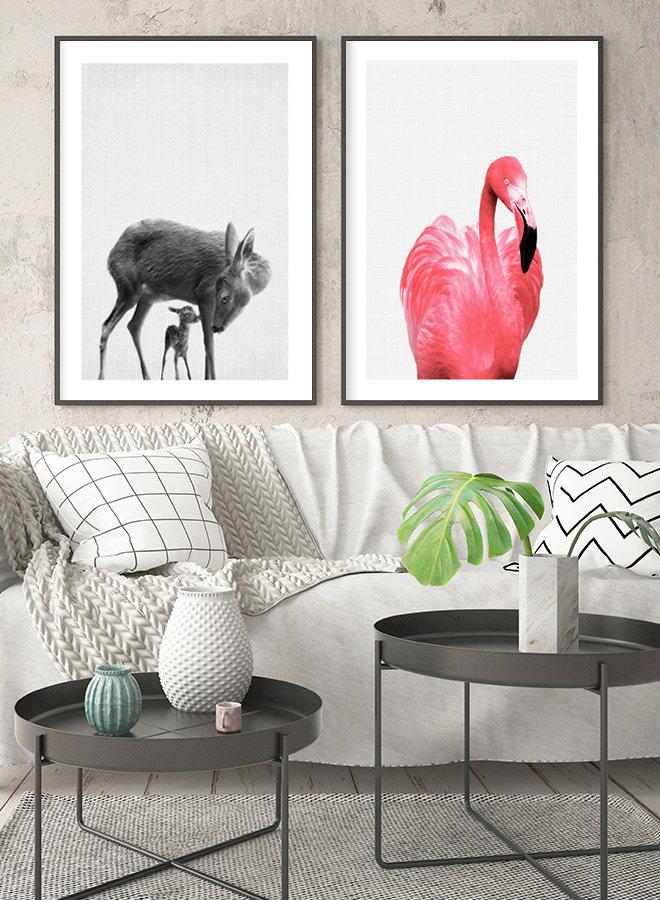 Flamingo Foto Poster