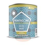 Peintagone Peintagone Finish Mat