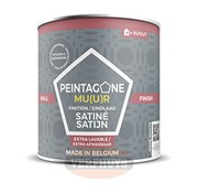 Peintagone Peintagone Wall Finish Satin