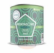 Peintagone Peintagone Mineral Finish