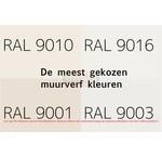 RAL 9010, RAL 9016, RAL 9001 en RAL 9003
