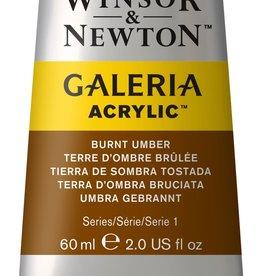 WInsor & Newton Acrylverf W&N Galeria 60ml Bruine Aarde Gebrande Omber 076