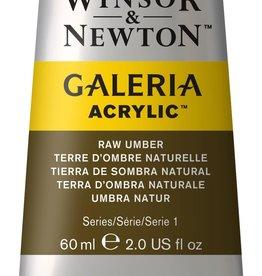 WInsor & Newton Acrylverf W&N Galeria 60ml Bruine Aarde Rauwe Omber  554