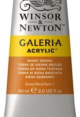 WInsor & Newton Acrylverf Galeria van Winsor&Newton. Prima studiekwaliteit acrylverf, waarvan ook de roden lang goed blijven en niet klonteren. Homogene stevige substantie die met vertrager (Rowney System 3 vertrager bijvoorbeeld) kan worden gebruikt voor thuiszeefdruk.