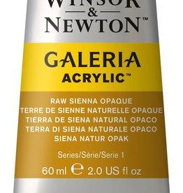 WInsor & Newton Acrylverf W&N Galeria 60ml Bruine Aarde Rauwe Sienna  552