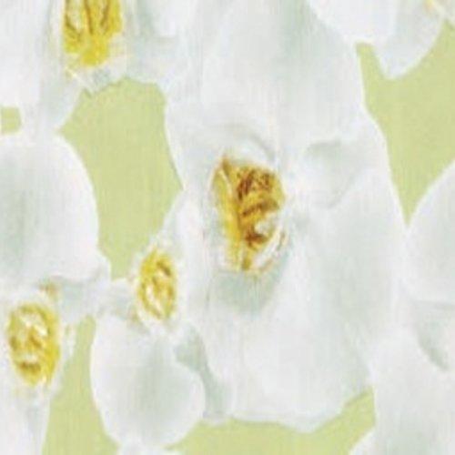 Plakfolie-Plakplastic orchidee MINIMALE BESTELEENHEID 6 STUKS