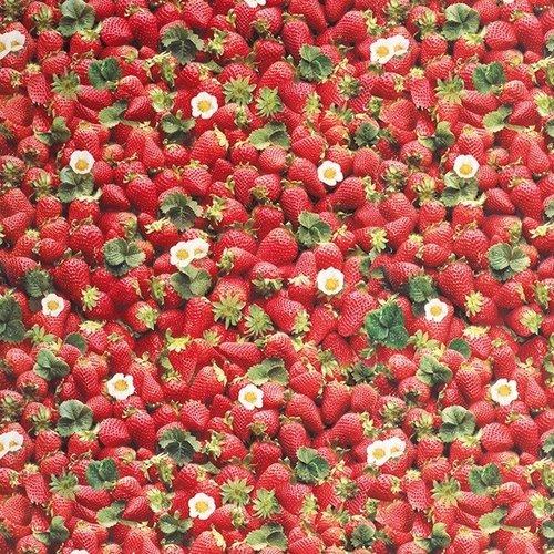 PVC Wachstuch Erdbeeren