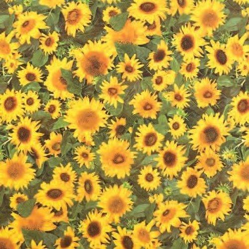 PVC oilcloth Sunflowers