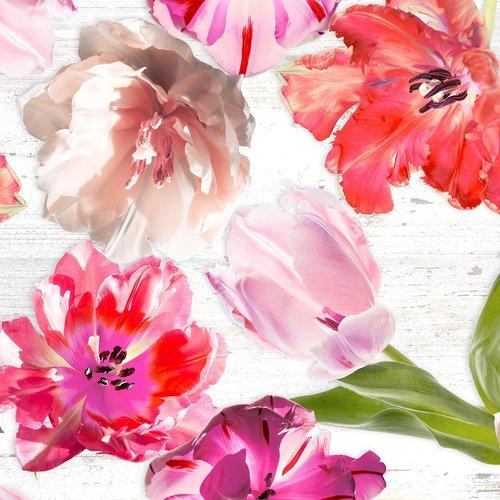 PVC Wachstuch Tulpen aus