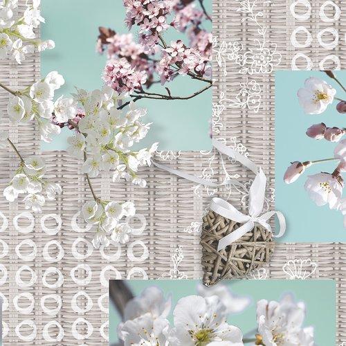 PVC Tafelzeil Blossom brocante