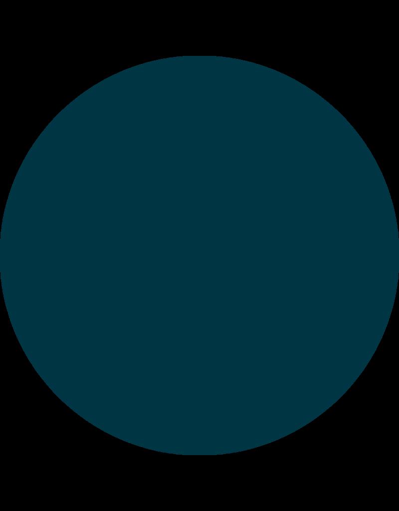 CARMA   #016 Darkest Green Gelpolish