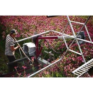 Bioforce Uk Echinaforce Echinacea Drops 50ml