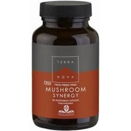 Terranova Mushroom Synergy (50 capsules)
