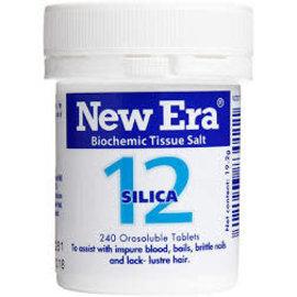 New Era New Era Combination 12 - silica [240s]