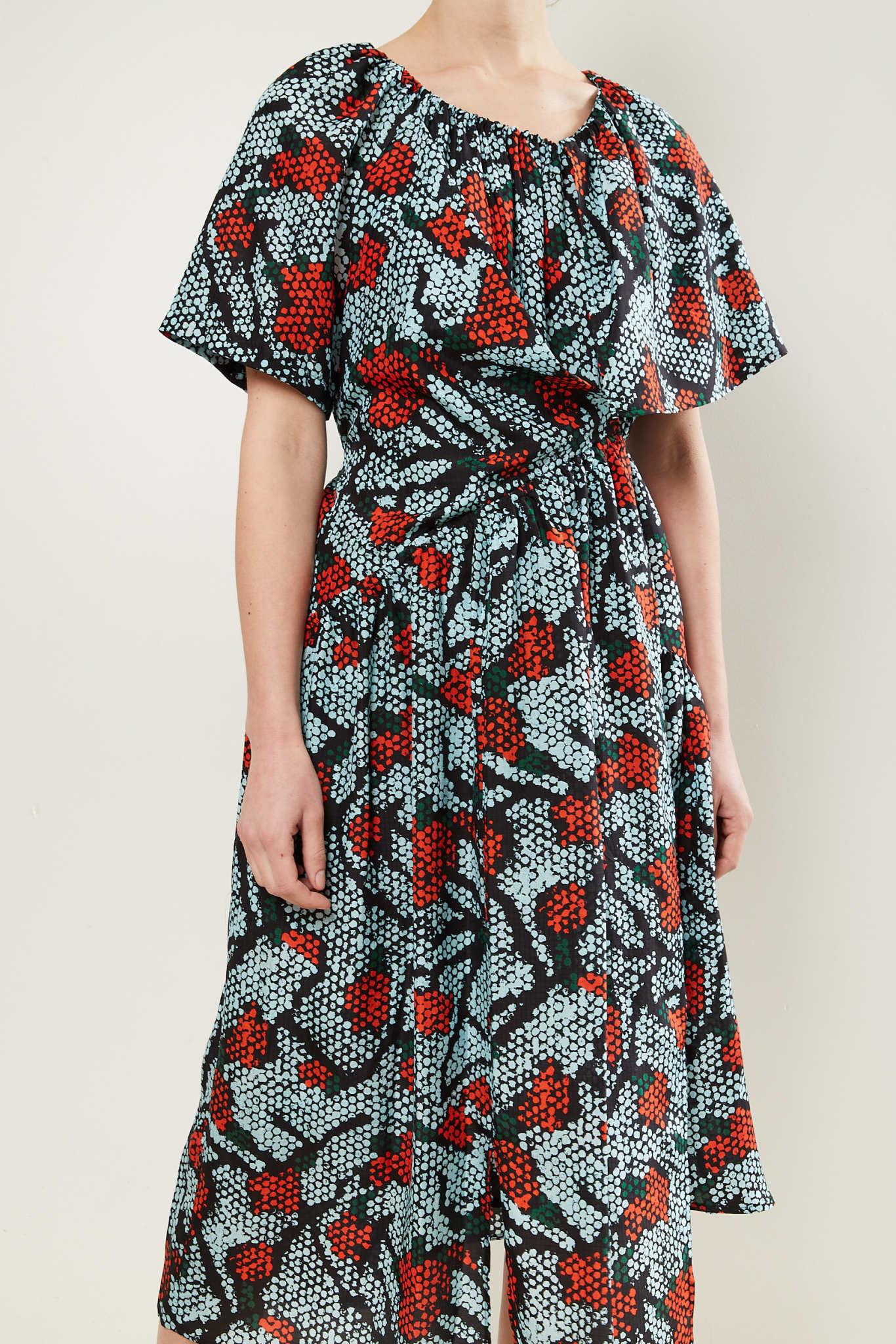 Christian Wijnants - Damba silk iris dress
