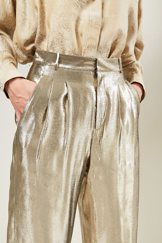 inDRESS - Shiny pants