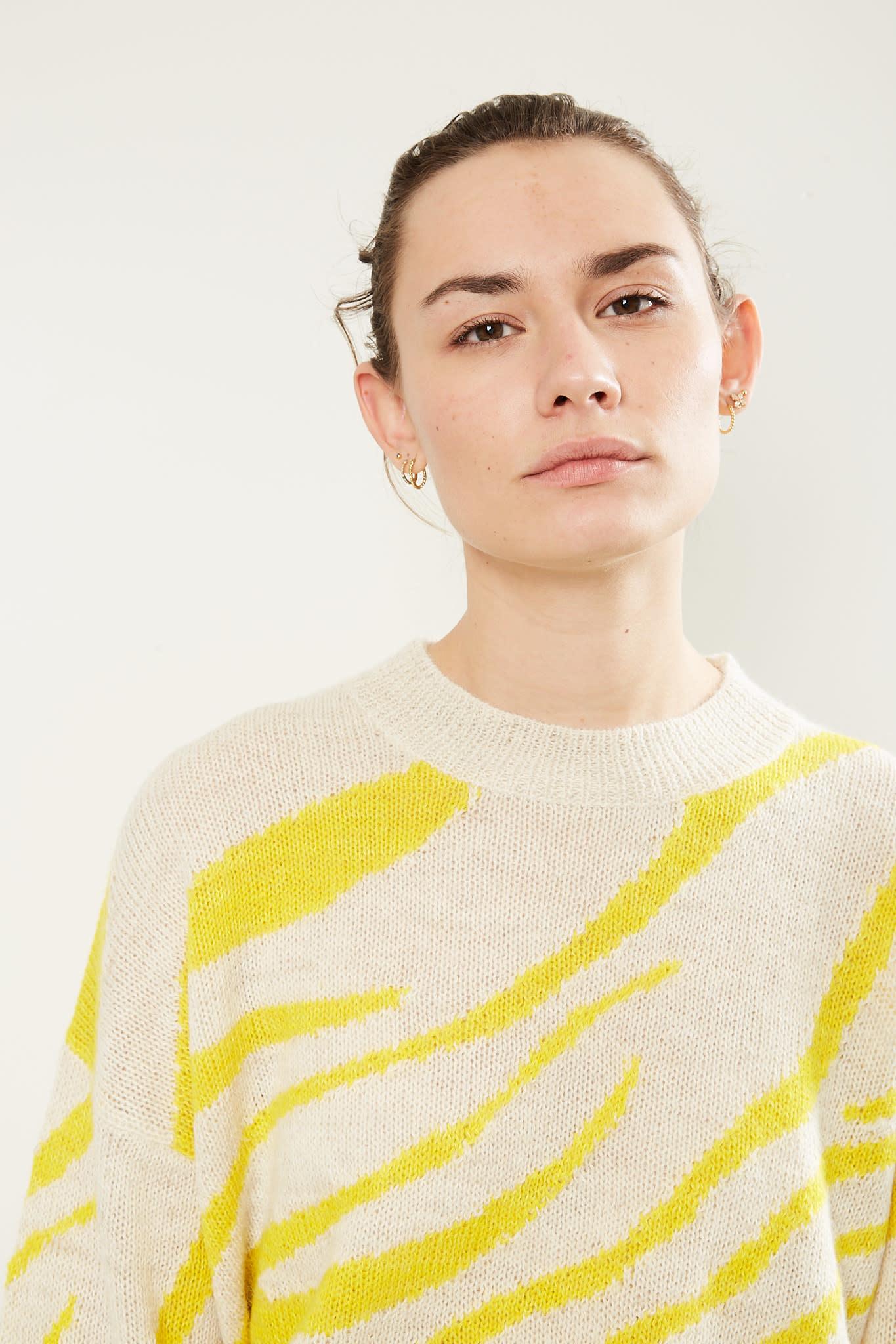 Etoile Isabel Marant Genna zebra intarsia sweater