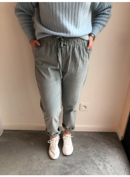 Charlie corduroy trousers light blue