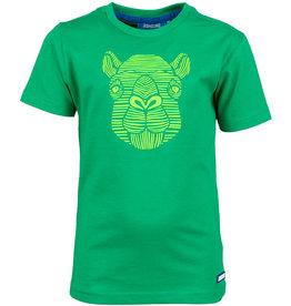 Someone jongensTshirt groen kameel  THEO-SB-02-A