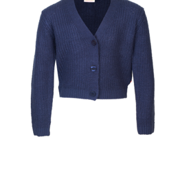 Someone Cardigan navy kort model