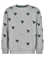 The New Sweater grijs/cactus