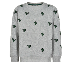 The New Sweater grijs/cactus