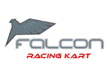 Falcon Kart
