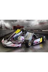 Haase Kart sticker set FP7 / evo 14