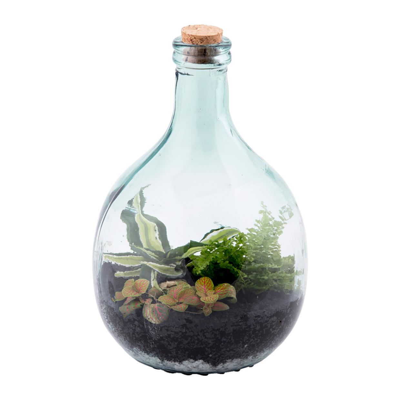 Terrarium set 5 liter