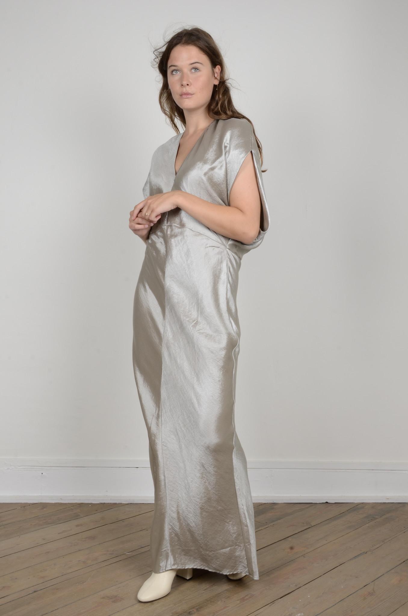 DIA METALLIC DRESS-5