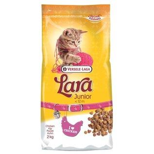 Lara Lara kitten
