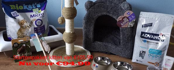 Starterspakket kitten