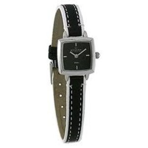 Skagen Watch strap 245SSLBW