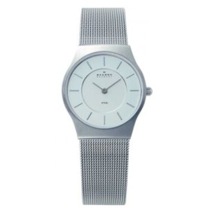 Skagen Watch strap 233SSS