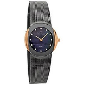 Skagen Watch strap 589SRM