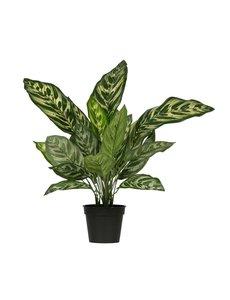 Woood Aglaonema kunstplant groen 50cm