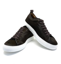 Sneakers BOB JCC866 Brown