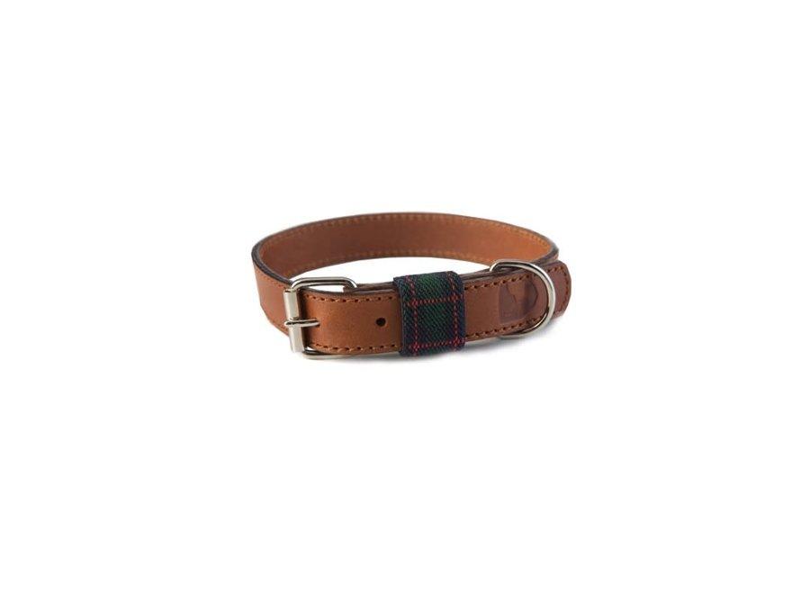 Edimburgh Green collar