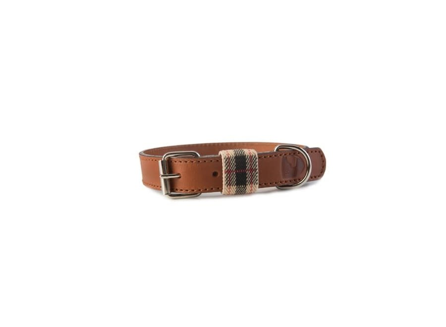 Edimburgh Beige collar